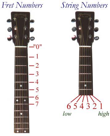 acoustic guitar parts. acoustic guitar, the parts